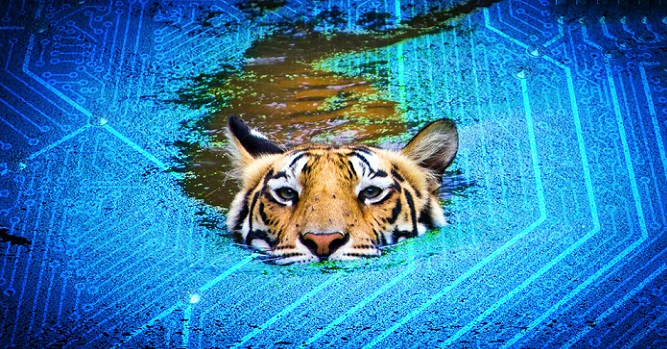 اینتل به طور رسمی معرفی کرد: نسل جدید پردازندههای گیمینگ Tiger Lake-H با بنچمارک های طوفانی