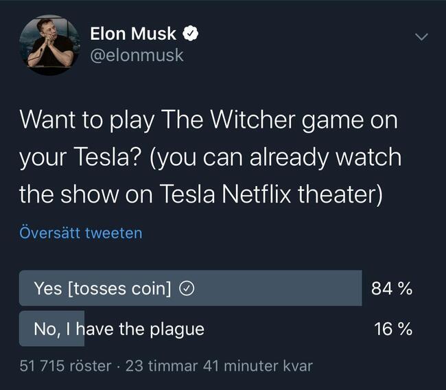 elon-witcher.jpg